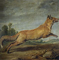 Paul de Vos - Running fox.jpg
