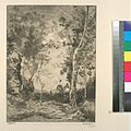 Paysage (ou Le cheval blanc), d'après Corot (NYPL b14504923-1130962).jpg