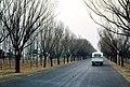 Pekín 1978 02.jpg