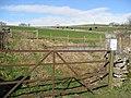 Pennyunk Lane - Pond restoration in the White Peak - geograph.org.uk - 755724.jpg