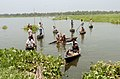 People sailing in country-boats to cast their votes in 3rd phase of State Assembly Elections-2006 at Moshpota in North 24 Pargana, West Bengal on April 27, 2006.jpg