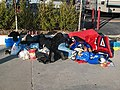 People sleeping before the Rose Parade.jpg