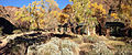 Phantom Ranch in fall.JPG
