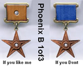 Phoenix B 1of3'S service medal.png