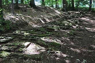 Piatra Roșie Dacian fortress - Image: Piatra Rosie Dacian fortress 029