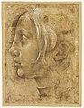 Piero di Cosimo - profil de femme - Musée du Louvre RF1439r.jpg