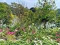 Pilikula Botanical Garden in Mangalore - 16.jpg