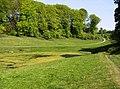 Pinbury Park lake and estate road - geograph.org.uk - 464903.jpg