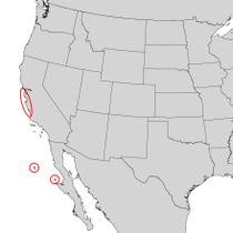 Pinus radiata range map 1.png