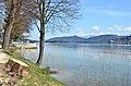 Poertschach Halbinsel Maria Woerth-Blick mit gefaelltem Baum 18042013 381.jpg