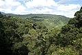 Poring - Aussicht vom Canopy Walk 0001.JPG