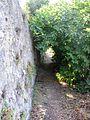 Porto Ercole - Salita alla fortezza.JPG