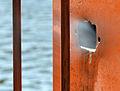 Pose de palplanches Deûle canaliséeLille2012 01.JPG