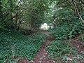 Poulton Curve Halt (site), Lancashire (geograph 5842522).jpg