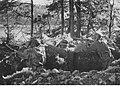 Pozycje wojsk niemieckich nad Dźwiną (2-875).jpg