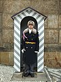Prague Castle Guard - winter.jpg