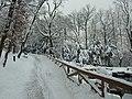 Praha, Smíchov, Kinského zahrada, sníh IV.JPG