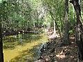 Prairie Creek - panoramio (3).jpg