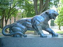 Università di Princeton Cleo tiger.jpg
