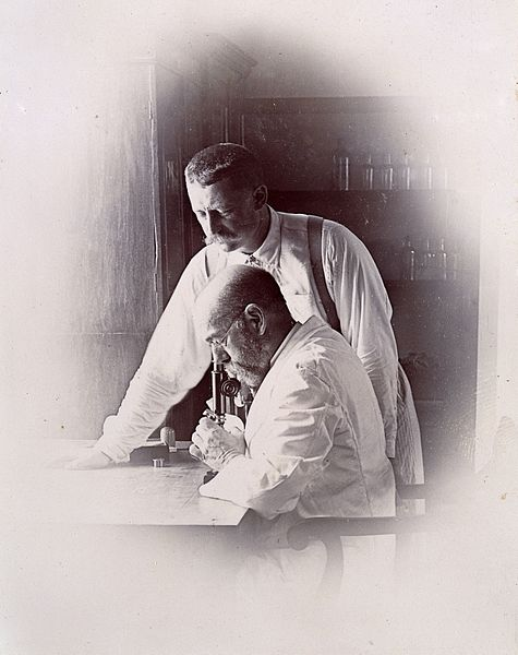 File:Professors Koch and Pfeiffer working in a laboratory, invest Wellcome L0030175.jpg