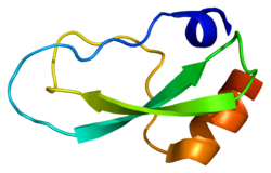 Protein COL6A3 PDB 1knt.png