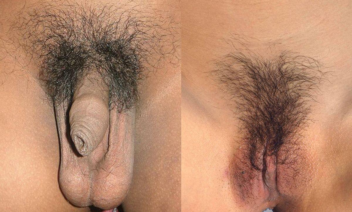 Female exposed pubic hair vids 8