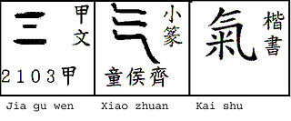 <i>Qi</i> Vital force forming part of any living entity in traditional Chinese philosophy