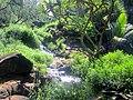 Queen's Bath Kauai - panoramio (8).jpg