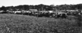 Queensland State Archives 332 The Car Park Railway Picnic Nielson Park Burnett Shire 1931.png