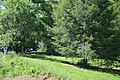 R.L. Stone property lawn.jpg