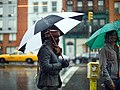 Rain in New York City (15642809307).jpg