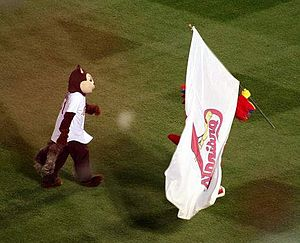 Rally Squirrel - Rally Squirrel and Cardinals mascot Fredbird walking the field at Busch Stadium during Game 7 of the 2011 World Series.