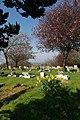 Rayleigh Cemetery - geograph.org.uk - 156944.jpg