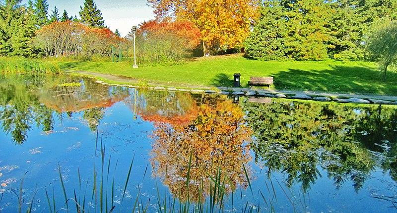 File:Reflet d'automne...- Autumn's reflexion... - panoramio.jpg
