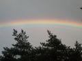 Regenbogen Farben.jpg