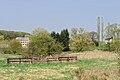 Rhamnus cathartica Ehner Luxembourg 01.jpg