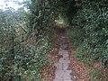 Ridgeway entering Mongewell - geograph.org.uk - 592084.jpg