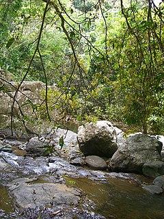 Cañas River (Ponce, Puerto Rico) River of Puerto Rico