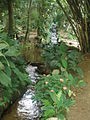 Rio de Janeiro Botanical Garden 4.JPG