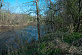 Rivana River-1.jpg