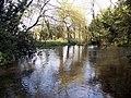 River Allen, Wimborne St Giles - geograph.org.uk - 368912.jpg