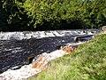 River Ayr at Catrine - geograph.org.uk - 519578.jpg