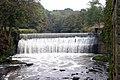 River Darwen at Roach Bridge - geograph.org.uk - 588108.jpg