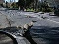 River Road, Christchurch 43.jpg