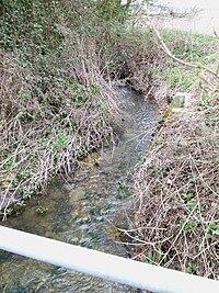 River ter tl718200.jpg