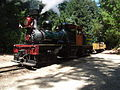 Roaringcampbigtrees steam engine.JPG