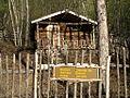 Robert Service Cabin.JPG