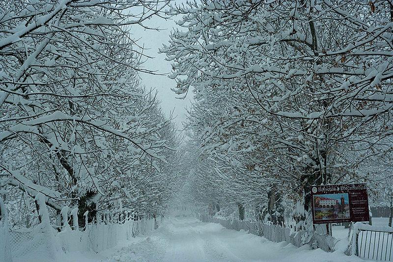 File:Roccamonfina - Inverno.jpg