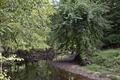 Rock Creek Park, NW, Washington, D.C LCCN2010641465.tif