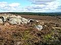Rocky outcrop near Horse Head - geograph.org.uk - 1198284.jpg